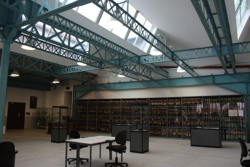 """Salle de lecture de """"Terre Blanche"""""""